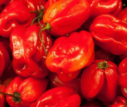 Banner chillies